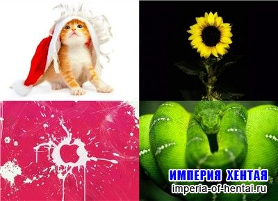 Kashebas wallpapers pack 21