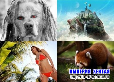 Kashebas wallpapers pack 27